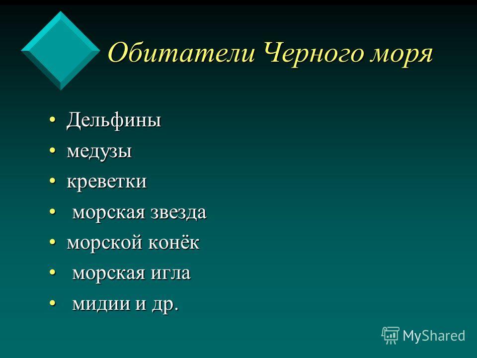 Обитатели Черного Моря Презентация