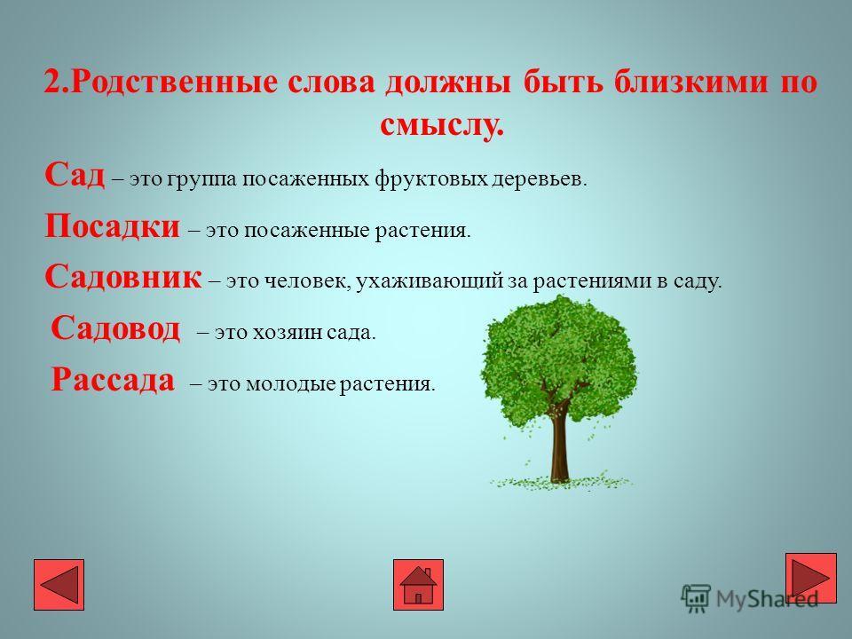 2. Родственные слова должны быть близкими по смыслу. Сад – это группа посаженных фруктовых деревьев. Посадки – это посаженные растения. Садовник – это человек, ухаживающий за растениями в саду. Садовод – это хозяин сада. Рассада – это молодые растени