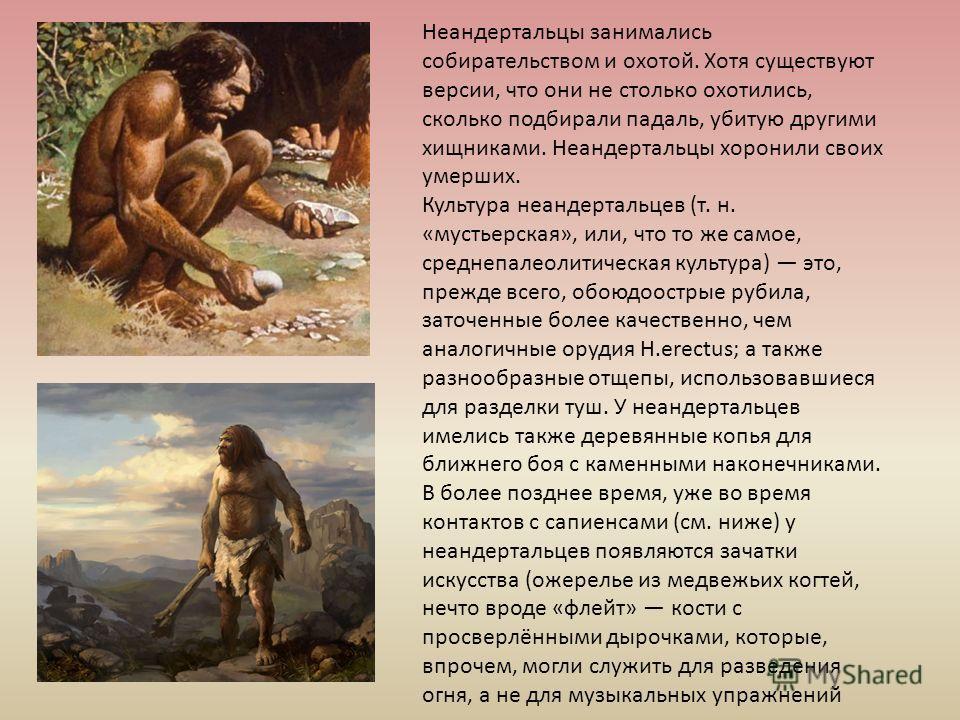 Неандертальцы занимались собирательством и охотой. Хотя существуют версии, что они не столько охотились, сколько подбирали падаль, убитую другими хищниками. Неандертальцы хоронили своих умерших. Культура неандертальцев (т. н. «мустьерская», или, что