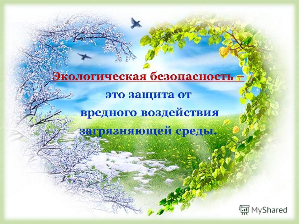 Экологическая безопасность – это защита от вредного воздействия загрязняющей среды.