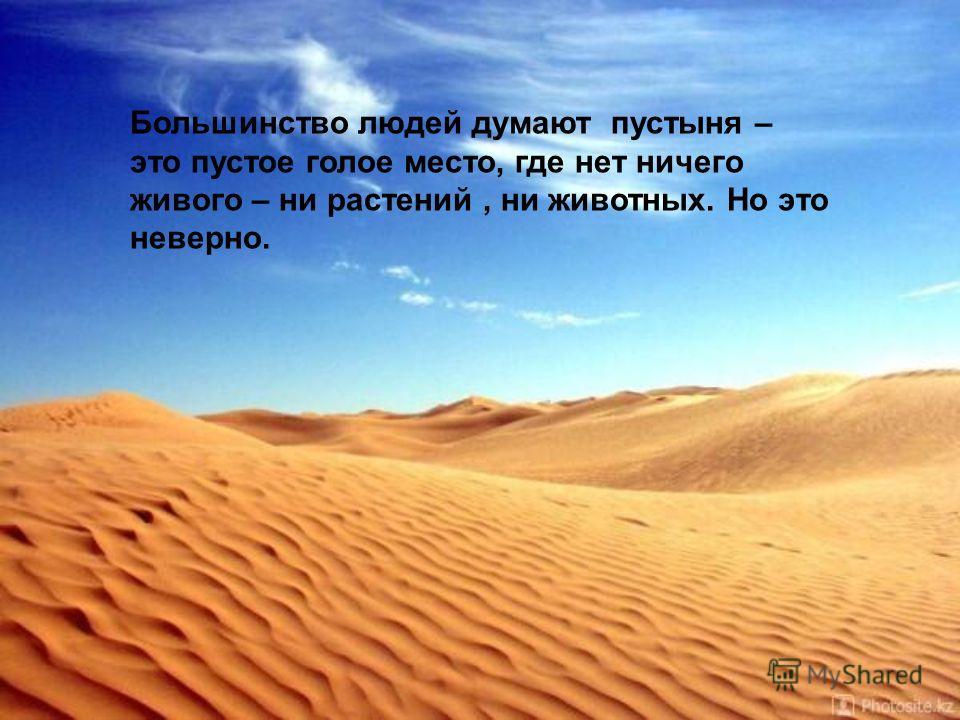 Большинство людей думают пустыня – это пустое голое место, где нет ничего живого – ни растений, ни животных. Но это неверно.
