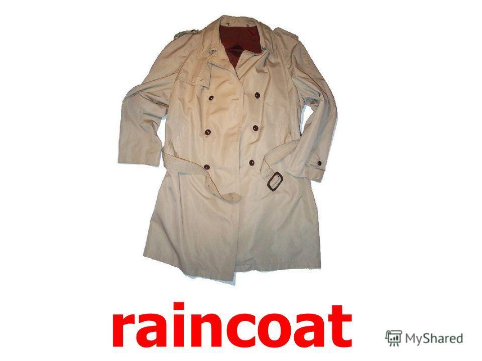 coat (blazer)