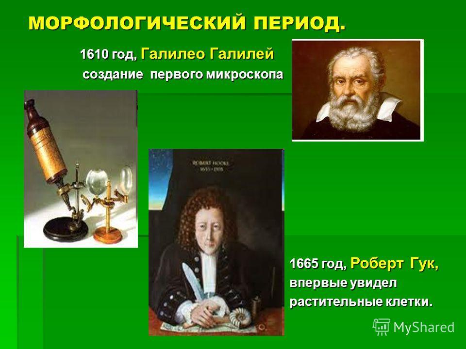 МОРФОЛОГИЧЕСКИЙ ПЕРИОД. 1610 год, Галилео Галилей 1610 год, Галилео Галилей создание первого микроскопа создание первого микроскопа 1665 год, Роберт Гук, 1665 год, Роберт Гук, впервые увидел впервые увидел растительные клетки. растительные клетки.