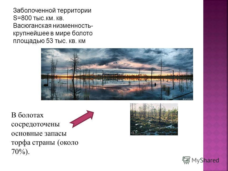 Заболоченной территории S=800 тыс.км. кв. Васюганская низменность- крупнейшее в мире болото площадью 53 тыс. кв. км В болотах сосредоточены основные запасы торфа страны (около 70%).