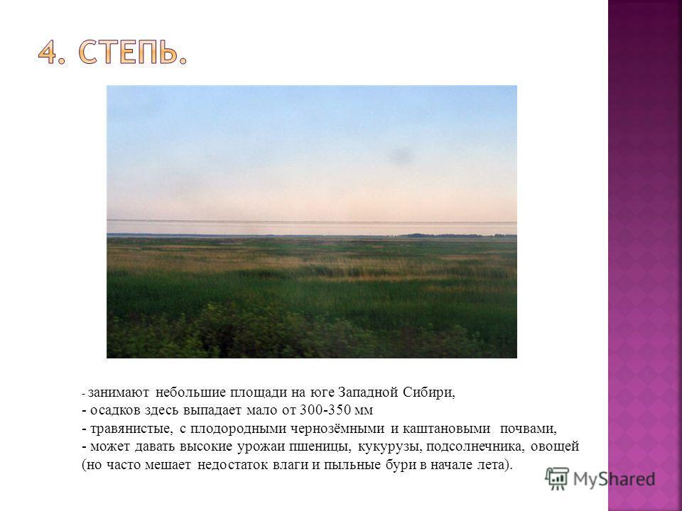 - занимают небольшие площади на юге Западной Сибири, - осадков здесь выпадает мало от 300-350 мм - травянистые, с плодородными чернозёмными и каштановыми почвами, - может давать высокие урожаи пшеницы, кукурузы, подсолнечника, овощей (но часто мешает