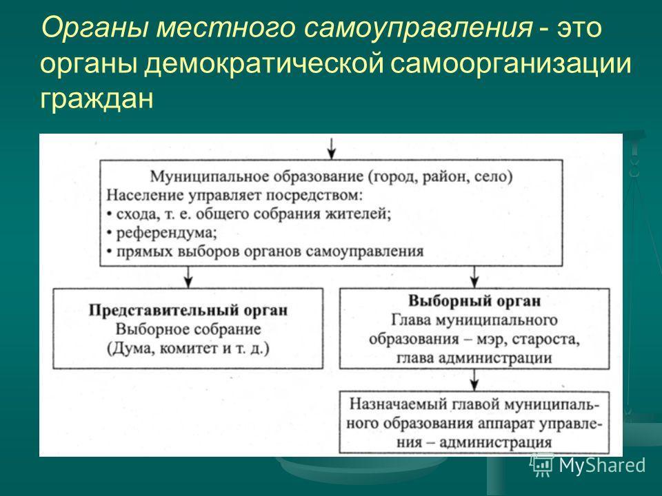 Органы местного самоуправления - это органы демократической самоорганизации граждан