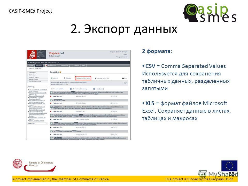 A project implemented by the Chamber of Commerce of VeniceThis project is funded by the European Union CASIP-SMEs Project A project implemented by the Chamber of Commerce of VeniceThis project is funded by the European Union 2. Экспорт данных 2 форма