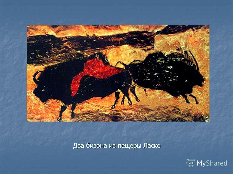 Два бизона из пещеры Ласко
