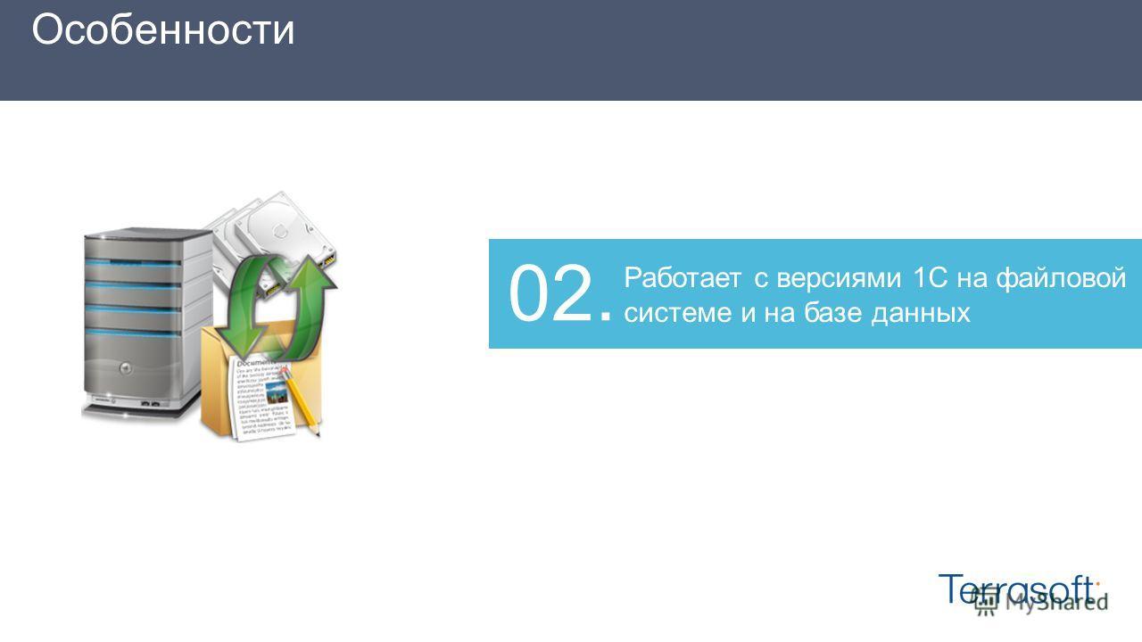 Работает с версиями 1С на файловой системе и на базе данных 02. Особенности