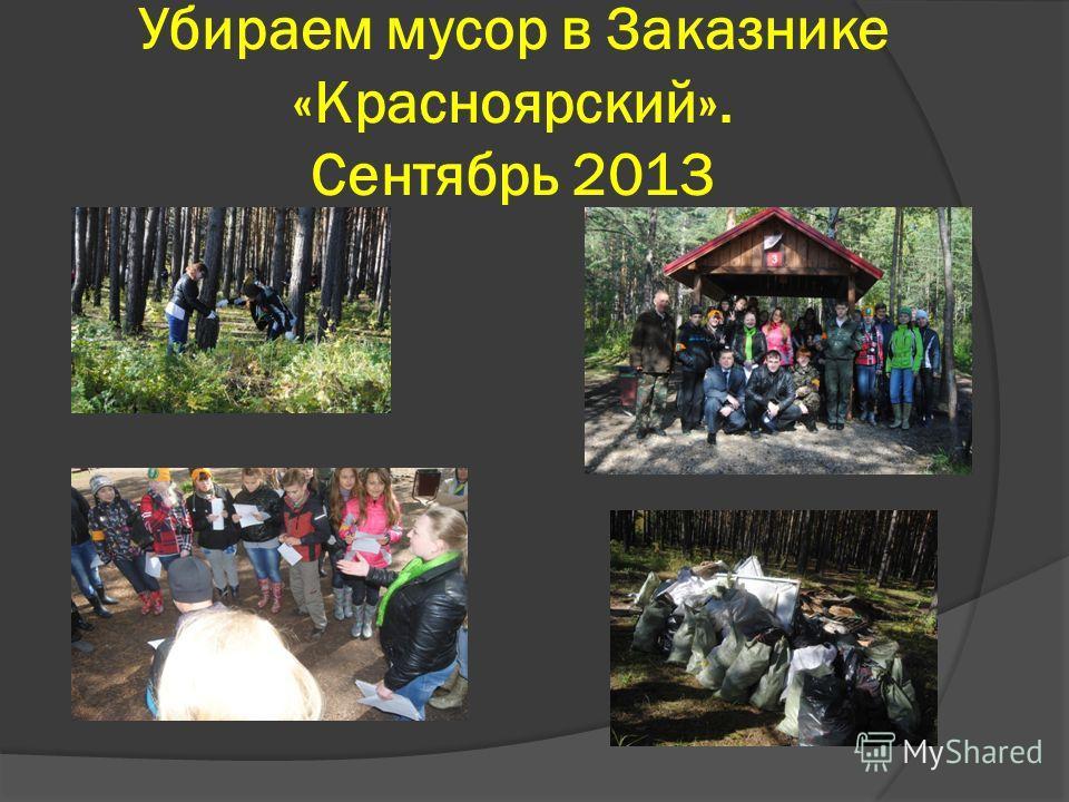 Убираем мусор в Заказнике «Красноярский». Сентябрь 2013