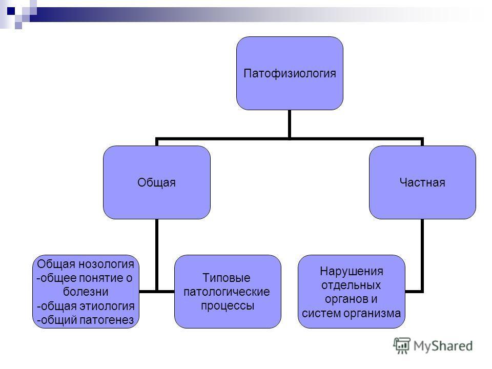 Патофизиология Общая Общая нозология -общее понятие о болезни -общая этиология -общий патогенез Типовые патологические процессы Частная Нарушения отдельных органов и систем организма
