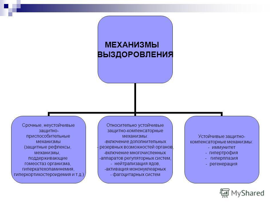 МЕХАНИЗМЫ ВЫЗДОРОВЛЕНИЯ Срочные, неустойчивые защитно- приспособительные механизмы (защитные рефлексы, механизмы, поддерживающие гомеостаз организма, гиперкатехоламинемия, гиперкортикостероидемия и т.д.) Относительно устойчивые защитно-компенсаторные