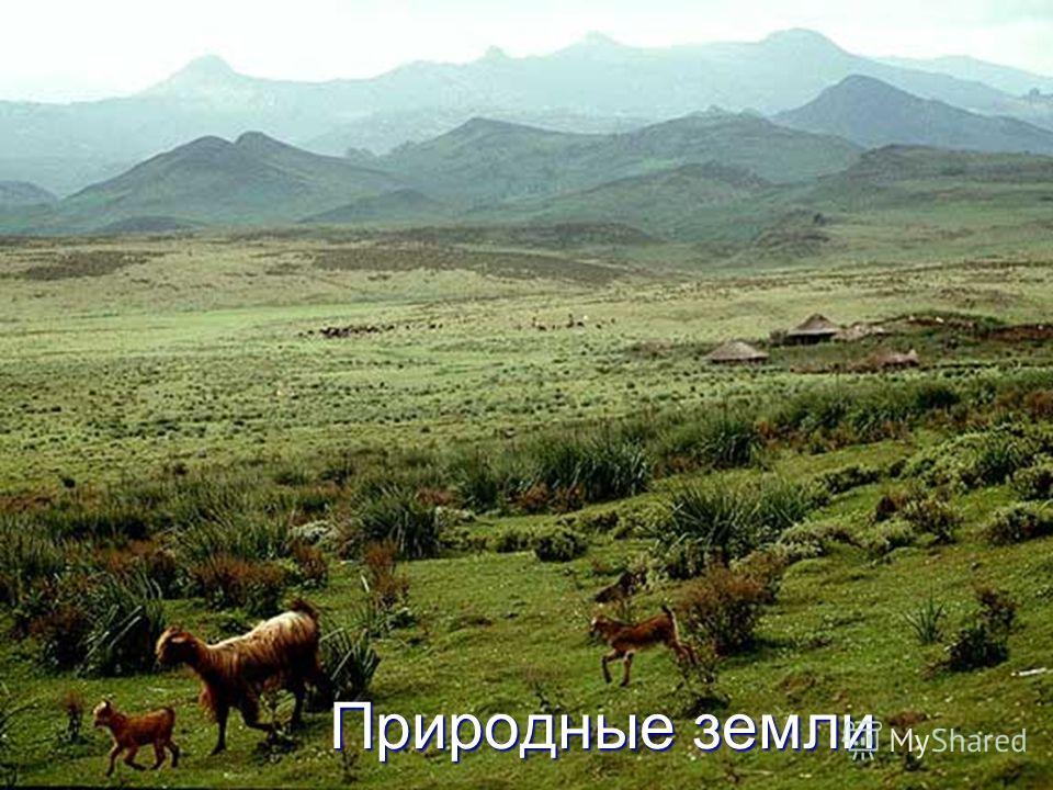 Природные земли