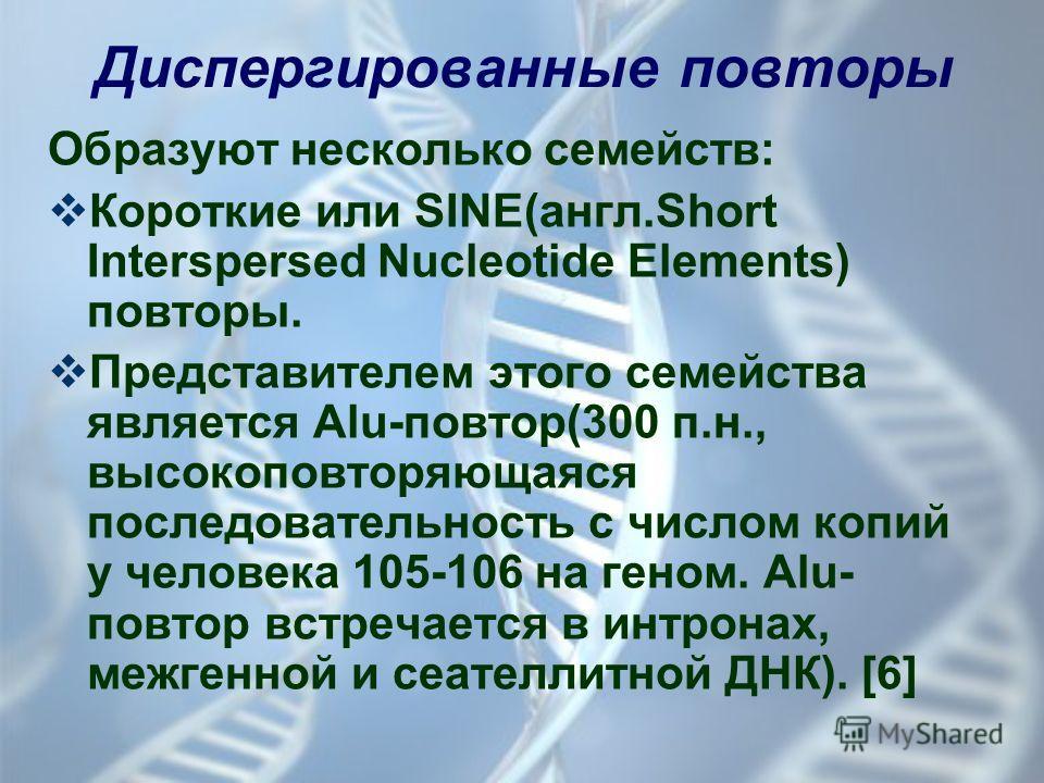 Диспергированные повторы Образуют несколько семейств: Короткие или SINE(англ.Short Interspersed Nucleotide Elements) повторы. Представителем этого семейства является Alu-повтор(300 п.н., высокоповторяющаяся последовательность с числом копий у человек