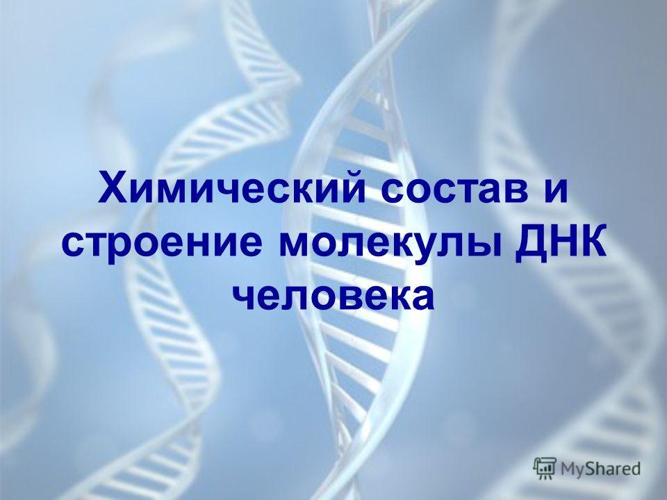 Химический состав и строение молекулы ДНК человека