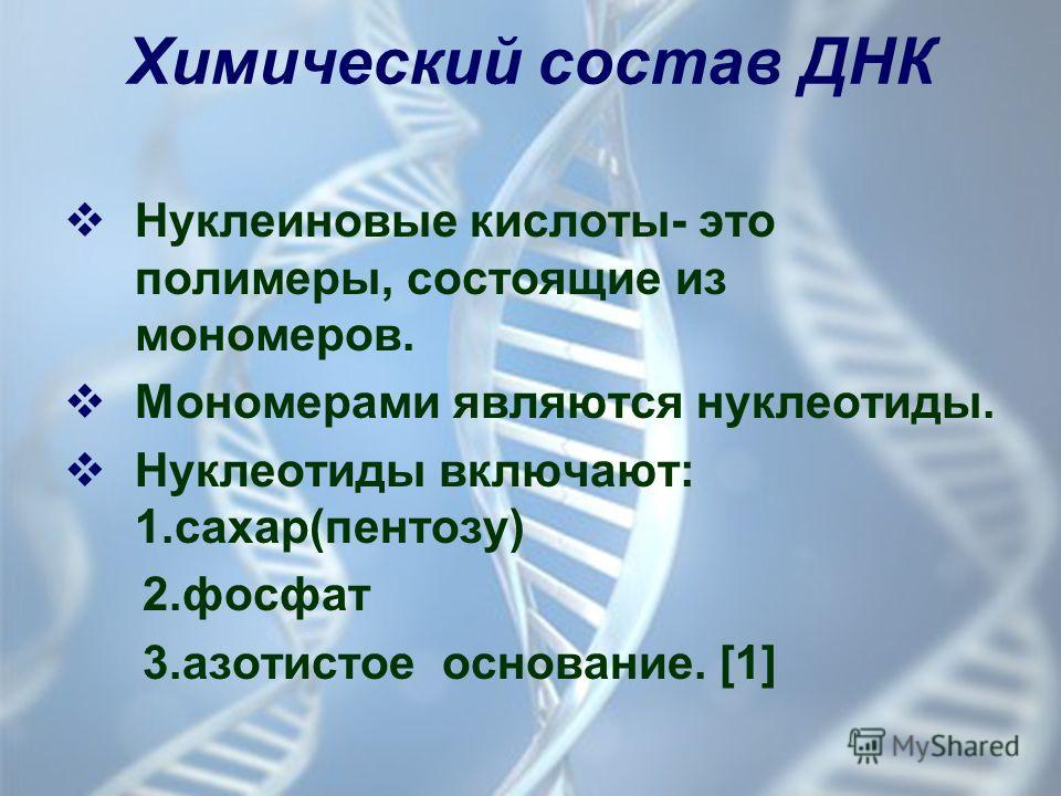 Химический состав ДНК Нуклеиновые кислоты- это полимеры, состоящие из мономеров. Мономерами являются нуклеотиды. Нуклеотиды включают: 1.сахар(пентозу) 2. фосфат 3. азотистое основание. [1]