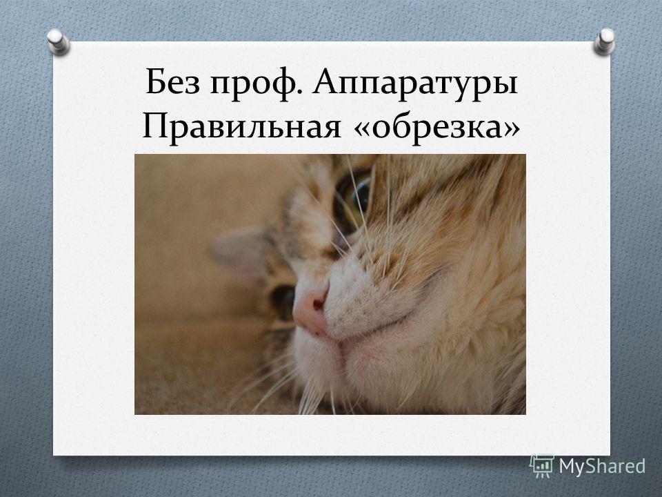Без проф. Аппаратуры Правильная «обрезка»