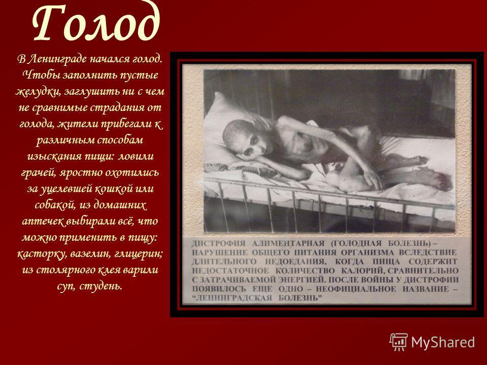 Голод В Ленинграде начался голод. Чтобы заполнить пустые желудки, заглушить ни с чем не сравнимые страдания от голода, жители прибегали к различным способам изыскания пищи: ловили грачей, яростно охотились за уцелевшей кошкой или собакой, из домашних