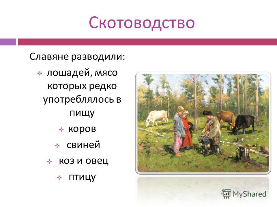 Скотоводство Славяне разводили : лошадей, мясо которых редко употреблялось в пищу коров свиней коз и овец птицу