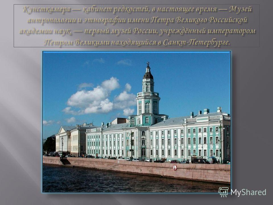 Гункина Ксения, 9 А Учитель : Подакалова Екатерина Юрьевна