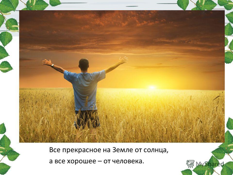 Все прекрасное на Земле от солнца, а все хорошее – от человека.