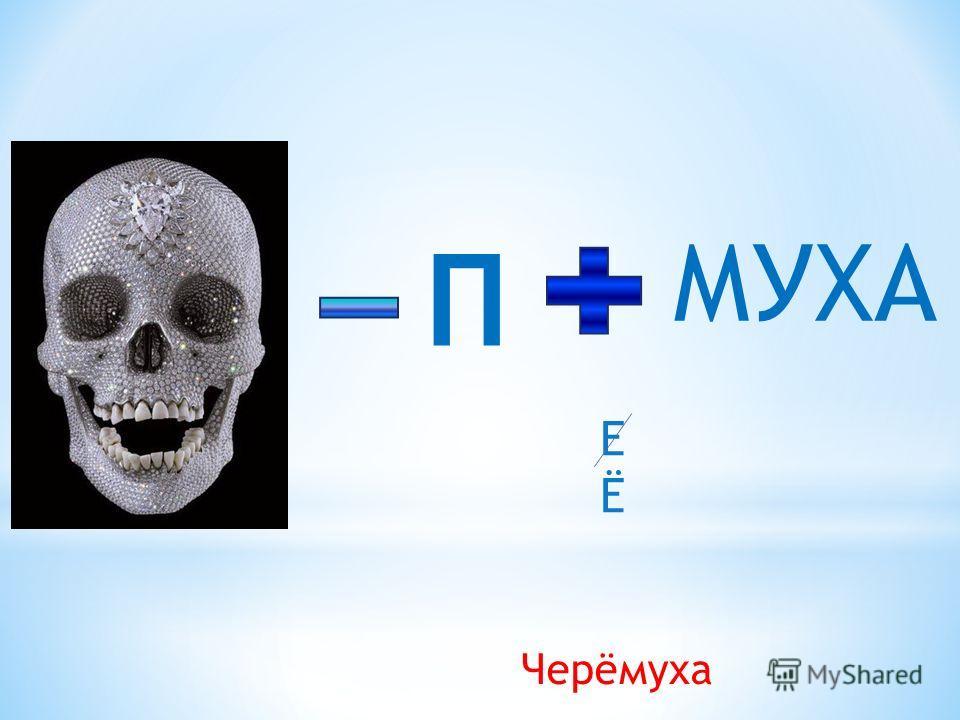 П МУХА Черёмуха ЕЁЕЁ
