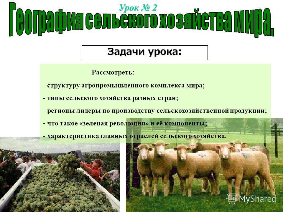 Урок 2 Задачи урока: Рассмотреть: - структуру агропромышленного комплекса мира; - типы сельского хозяйства разных стран; - регионы лидеры по производству сельскохозяйственной продукции; - что такое «зеленая революция» и её компоненты; - характеристик