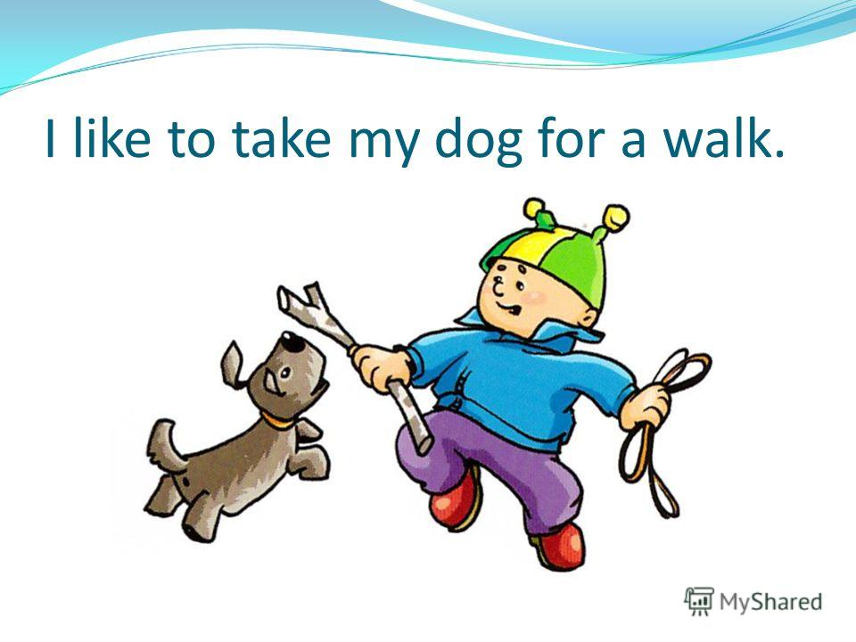 I like to take my dog for a walk.