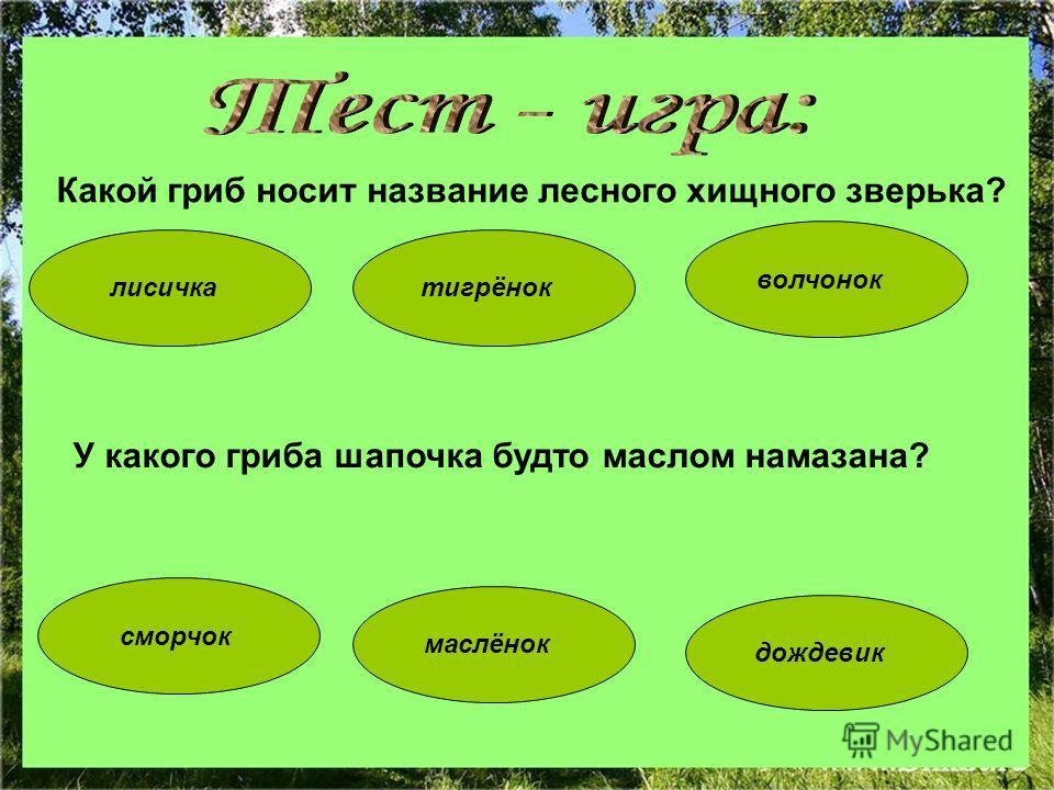 Какой гриб носит название лесного хищного зверька? волчонок тигрёнок сморчок дождевик лисичка маслёнок У какого гриба шапочка будто маслом намазана?