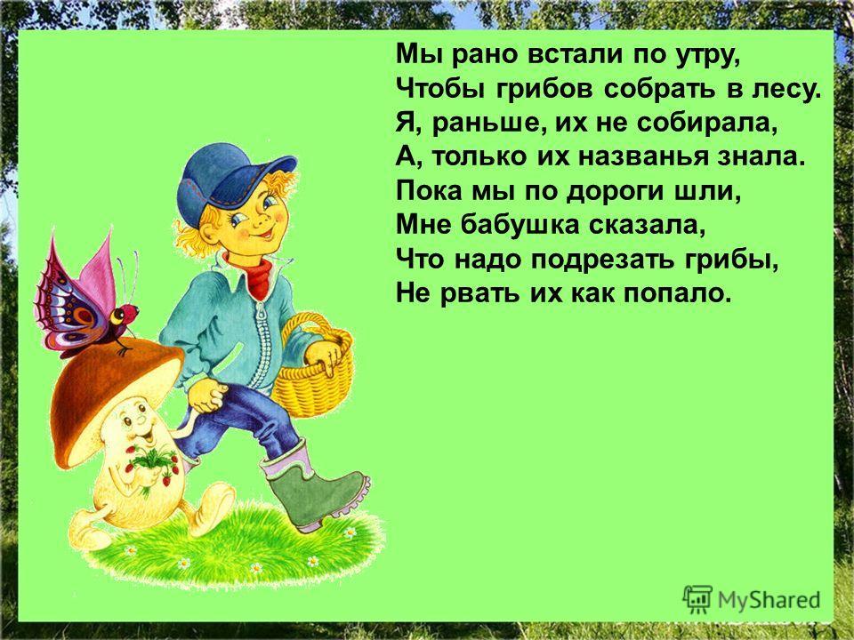 Мы рано встали по утру, Чтобы грибов собрать в лесу. Я, раньше, их не собирала, А, только их названья знала. Пока мы по дороги шли, Мне бабушка сказала, Что надо подрезать грибы, Не рвать их как попало.