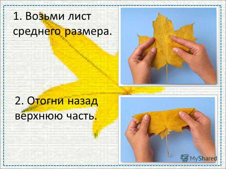 1. Возьми лист среднего размера. 2. Отогни назад верхнюю часть.
