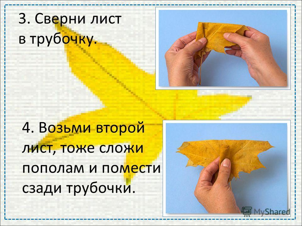 3. Сверни лист в трубочку. 4. Возьми второй лист, тоже сложи пополам и помести сзади трубочки.