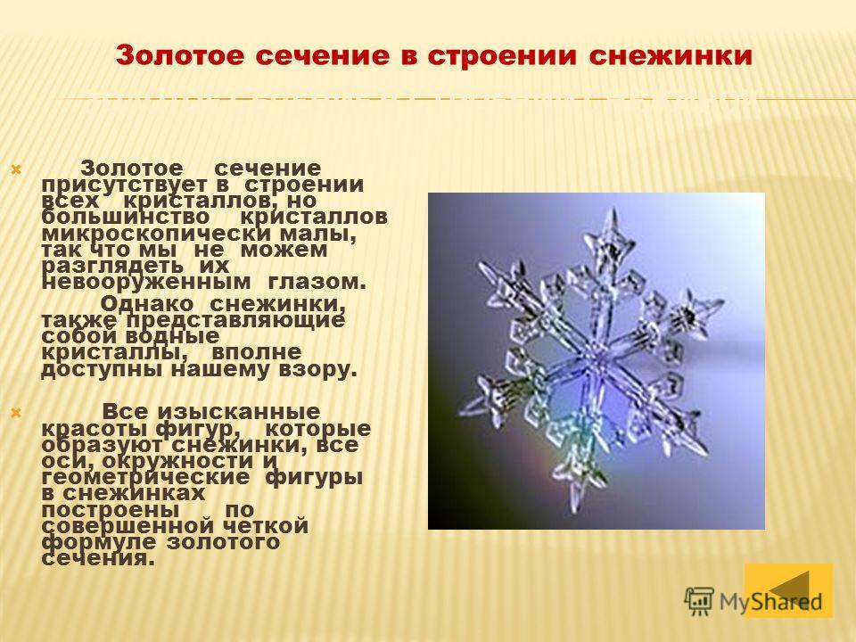 Золотое сечение присутствует в строении всех кристаллов, но большинство кристаллов микроскопически малы, так что мы не можем разглядеть их невооруженным глазом. Однако снежинки, также представляющие собой водные кристаллы, вполне доступны нашему взор