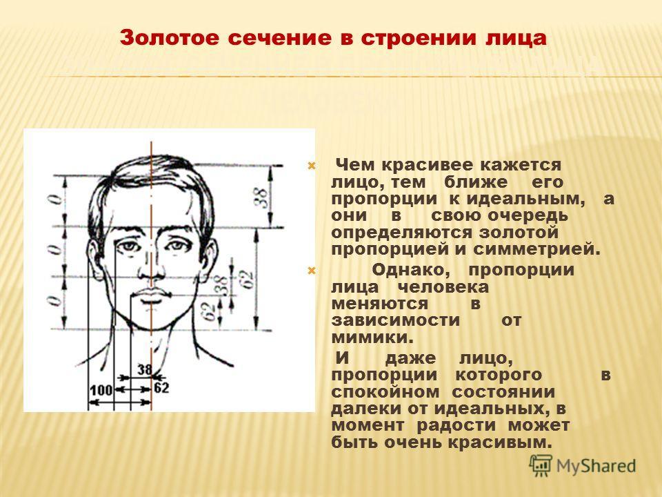 Чем красивее кажется лицо, тем ближе его пропорции к идеальным, а они в свою очередь определяются золотой пропорцией и симметрией. Однако, пропорции лица человека меняются в зависимости от мимики. И даже лицо, пропорции которого в спокойном состоянии