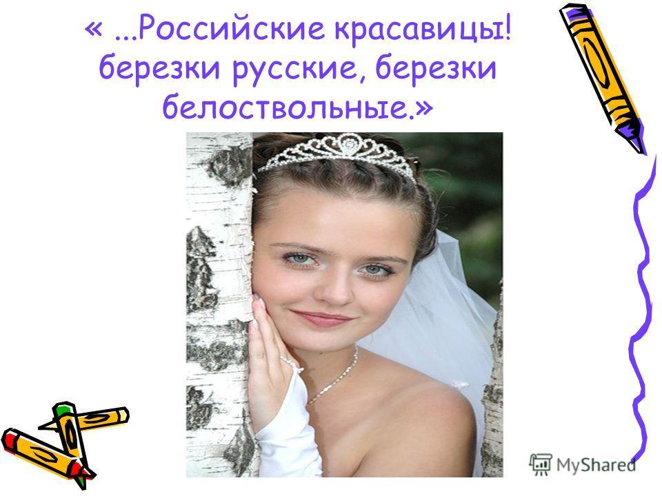 «...Российские красавицы! березки русские, березки белоствольные.»