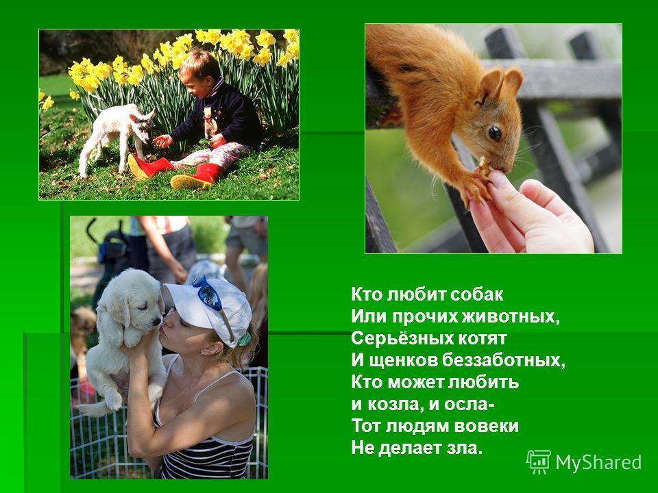 Кто любит собак Или прочих животных, Серьёзных котят И щенков беззаботных, Кто может любить и козла, и осла- Тот людям вовеки Не делает зла.