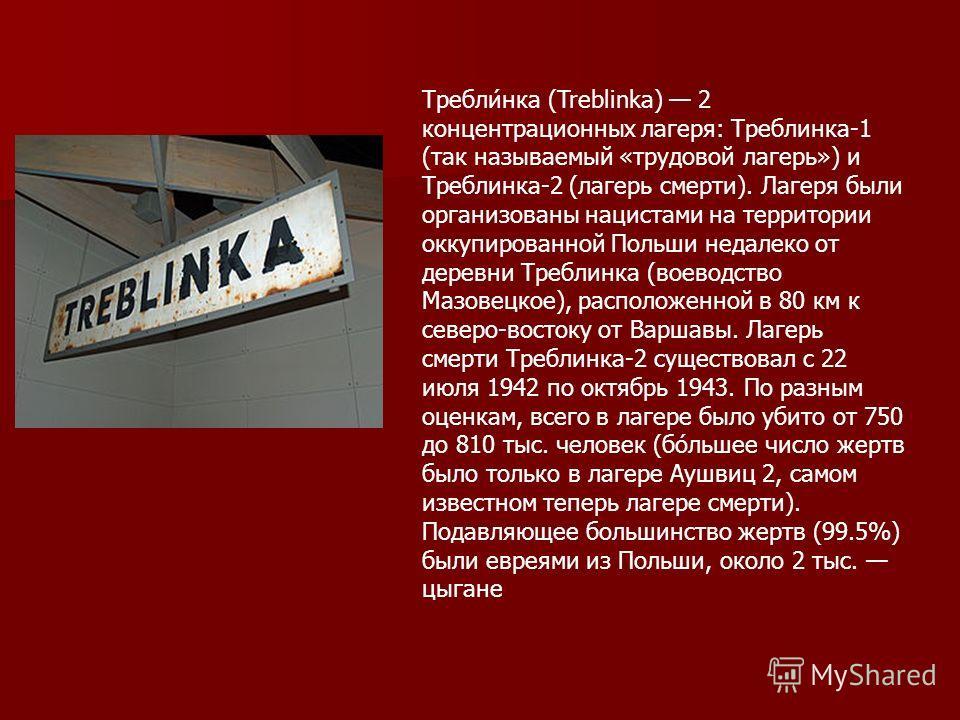 Требли́нка (Treblinka) 2 концентрационных лагеря: Треблинка-1 (так называемый «трудовой лагерь») и Треблинка-2 (лагерь смерти). Лагеря были организованы нацистами на территории оккупированной Польши недалеко от деревни Треблинка (воеводство Мазовецко