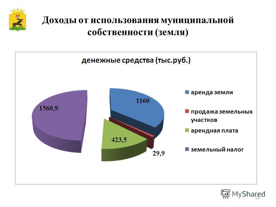 Доходы от использования муниципальной собственности (земля) 12