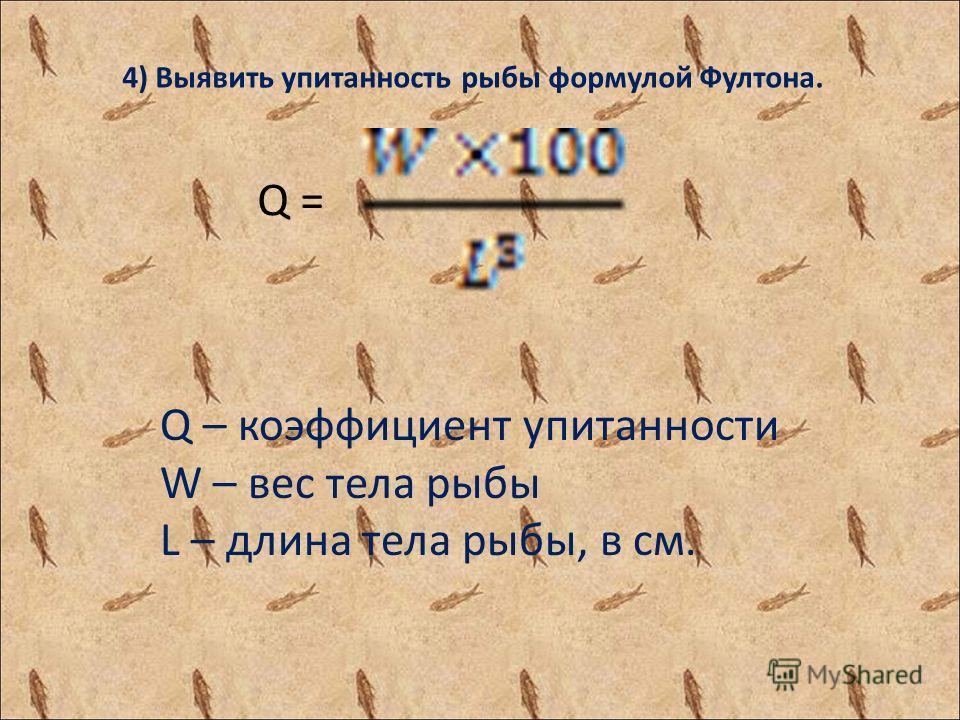 4) Выявить упитанность рыбы формулой Фултона. Q – коэффициент упитанности W – вес тела рыбы L – длина тела рыбы, в см. Q =