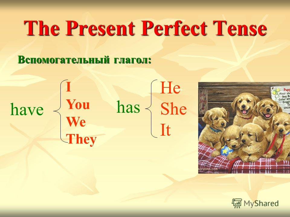 The Present Perfect Tense Вспомогательный глагол: I You We They have has He She It