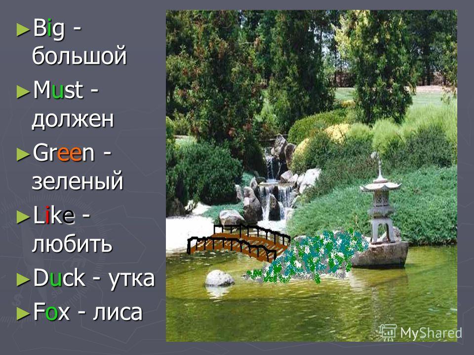 Big - большой Big - большой Must - должен Must - должен Green - зеленый Green - зеленый Like - любить Like - любить Duck - утка Duck - утка Fox - лиса Fox - лиса