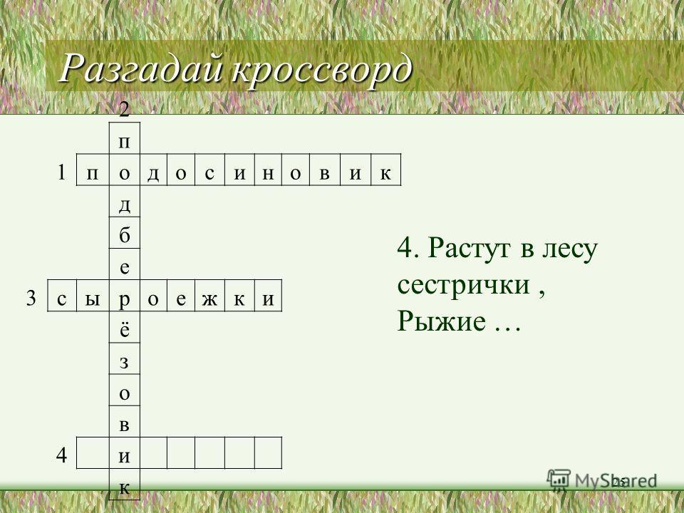 Разгадай кроссворд 24 2 п 1 подосиновик д б е 3 сыроежки ё з о в 4 и к