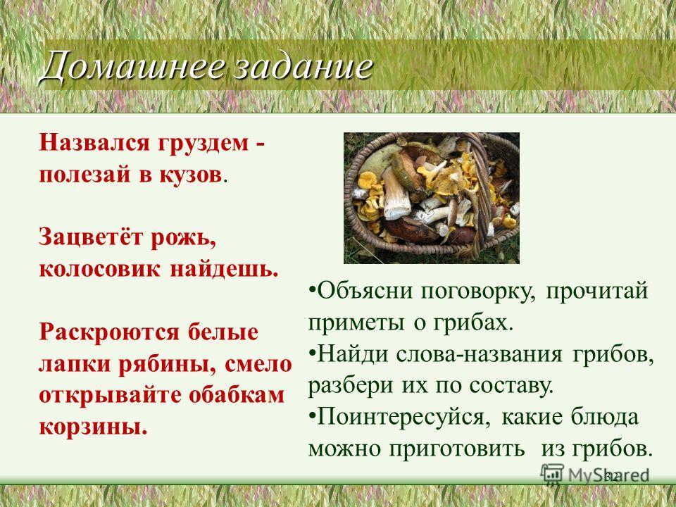 Красная Книга гриб-баран шишкогриб осиновик белый 31 паутинник фиолетовый