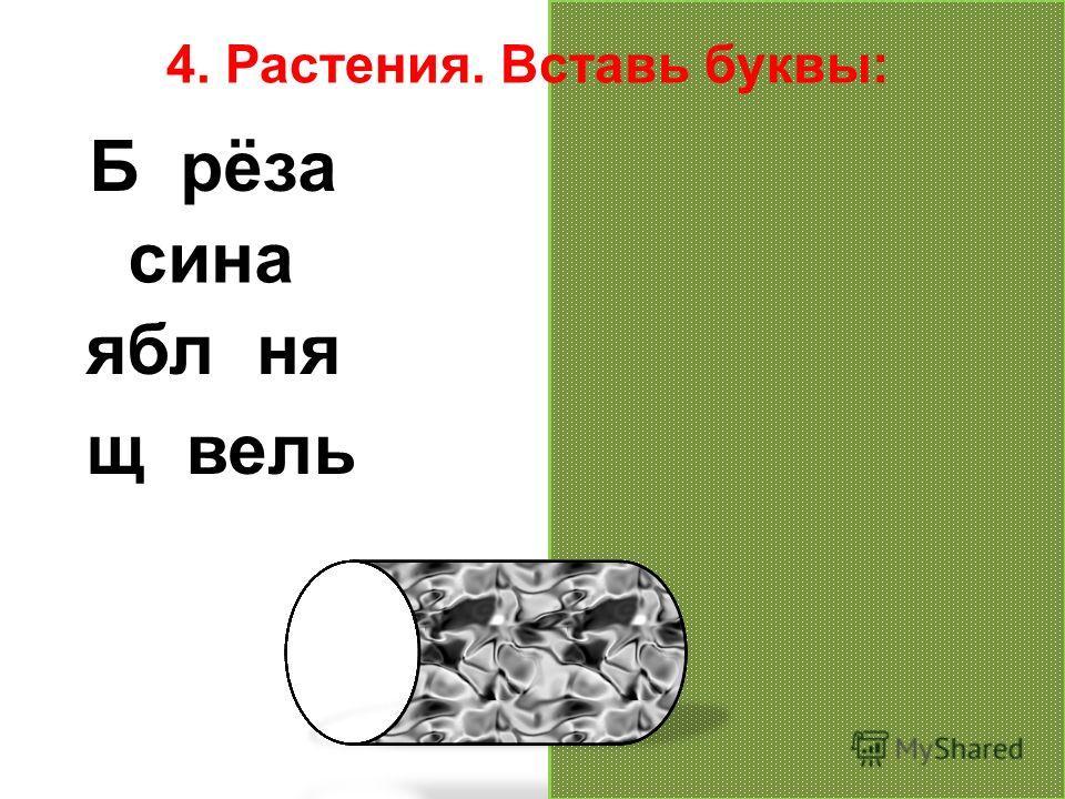 4. Растения. Вставь буквы: Берёза осина яблоня щавель