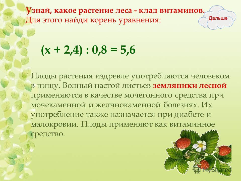 Узнай, какое растение леса - клад витаминов. Для этого найди корень уравнения: (х + 2,4) : 0,8 = 5,6 Плоды растения издревле употребляются человеком в пищу. Водный настой листьев земляники лесной применяются в качестве мочегонного средства при мочека
