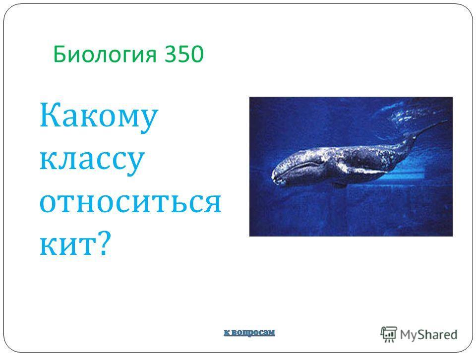 Биология 350 Какому классу относиться кит?