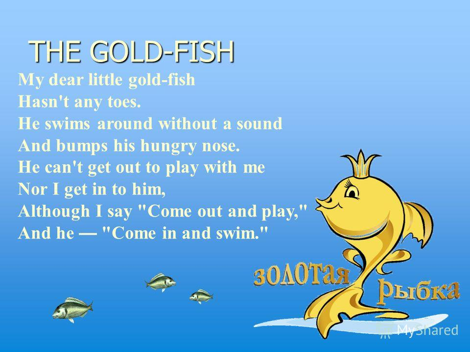 THE GOLD-FISH My dear little gold-fish Hasn't any toes. He swims around without a sound And bumps his hungry nose. He can't get out to play with me Nor I get in to him, Although I say Come out and play, And he Come in and swim.