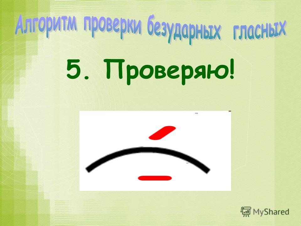 5. Проверяю!
