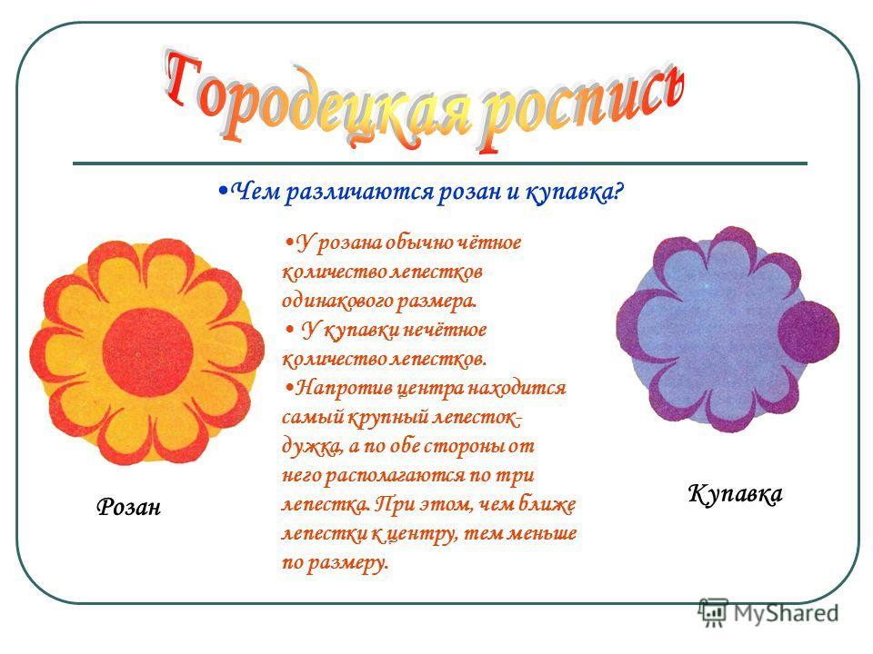 Розан Купавка У розана обычно чётное количество лепестков одинакового размера. У купавки нечётное количество лепестков. Напротив центра находится самый крупный лепесток- дужка, а по обе стороны от него располагаются по три лепестка. При этом, чем бли