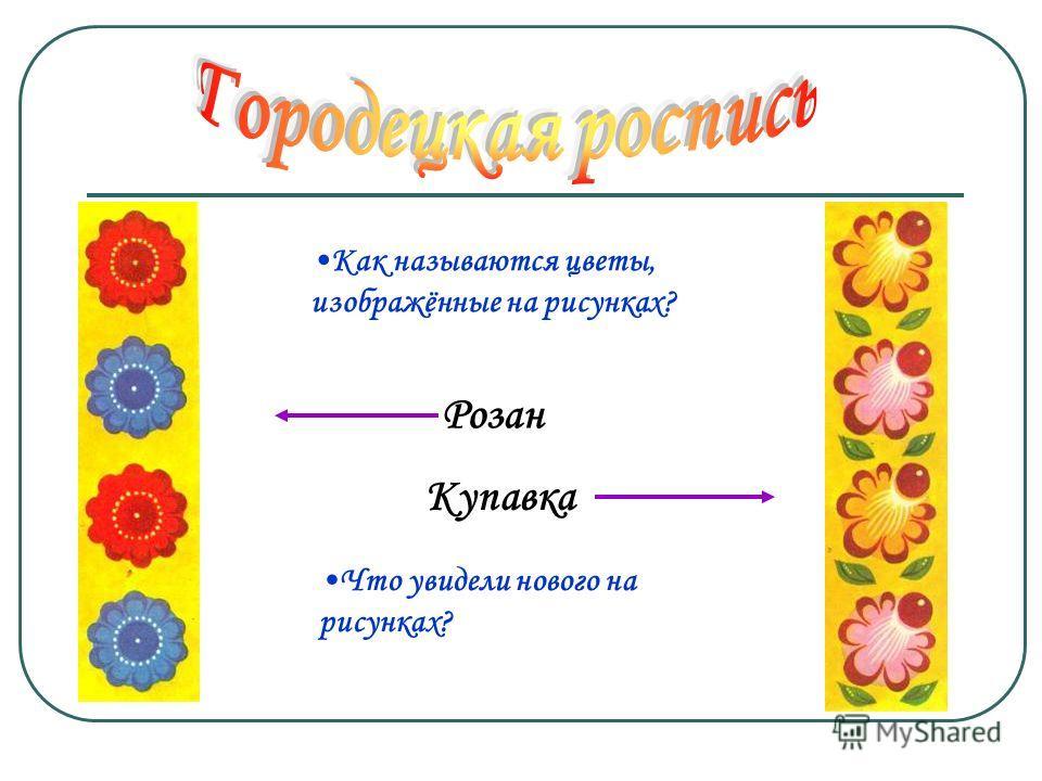 Как называются цветы, изображённые на рисунках? Розан Купавка Что увидели нового на рисунках?